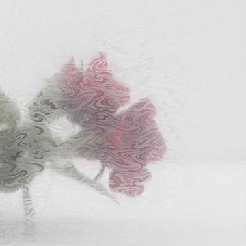 Bilde av Statisk vindusfolie bølger 90x150
