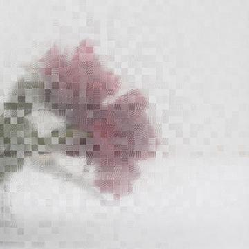 Bilde av Statisk vindusfolie firkanter 90x150
